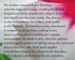 small rain poem